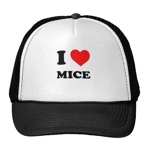 Amo ratones gorras