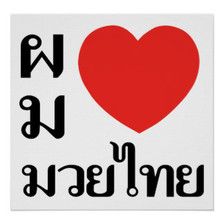 Amo tailandés de Muay (para los hombres) Póster