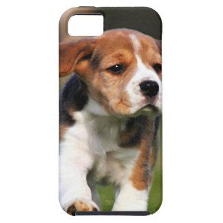 Amor adolescente del beagle iPhone 5 Case-Mate cárcasa
