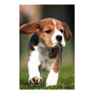 Amor adolescente del beagle  papeleria de diseño