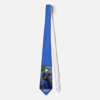 Amor azul de los loros corbata