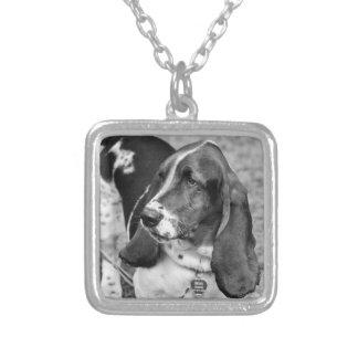 Amor de Basset Hound Collar Personalizado