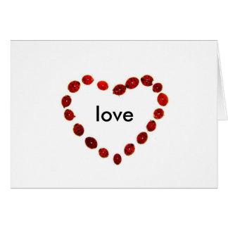 amor de la mariquita tarjeta de felicitación