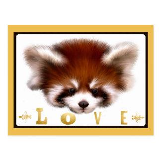 Amor de la panda roja postal
