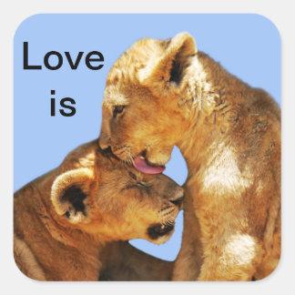 Amor de los leones del bebé pegatina cuadrada