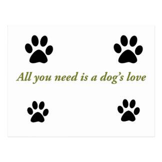 Amor de los perros postal