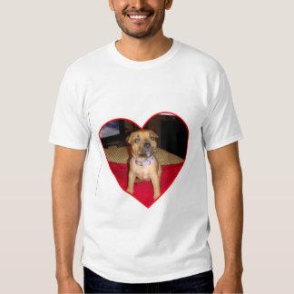 Amor de Pitbull Camisetas