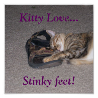 ¡Amor del gatito…, pies Stinky! Posters