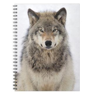 Amor del lobo libretas