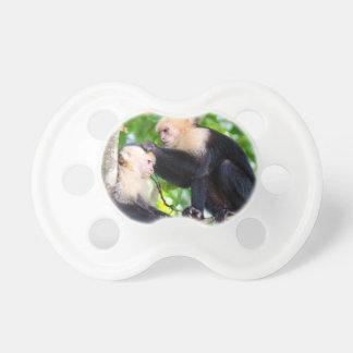 Amor del mono chupete de bebé