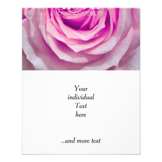 Amor del rosa color de rosa (i) folleto 11,4 x 14,2 cm