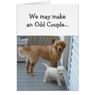 Amor del socio del aniversario con humor lindo del tarjeta de felicitación