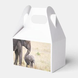 Amor maternal caja de regalos