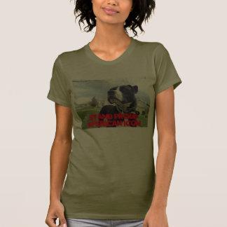 Amor verdadero americano de Terrier de pitbull Camisetas