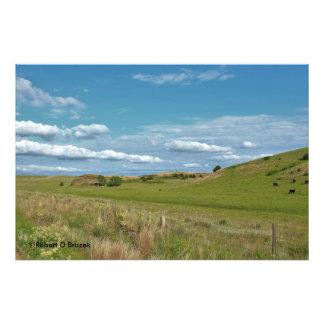 Ampliación de la foto del pasto del país de Kansas