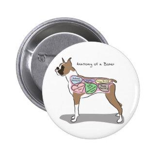 Anatomía de los regalos de un perro del boxeador chapa redonda de 5 cm
