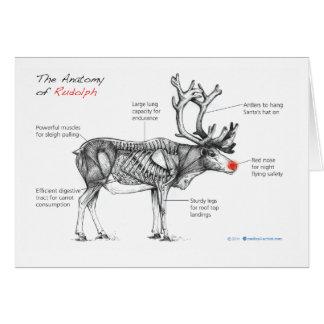 Anatomía de tarjeta de felicitación