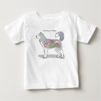 Anatomía de una ropa fornida camiseta de bebé