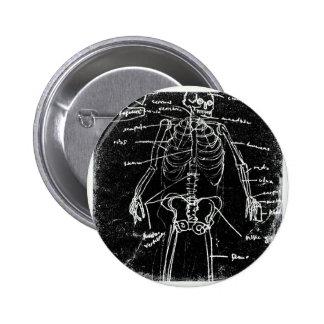 anatomía esquelética humana de Tokio del yaie Chapa Redonda De 5 Cm