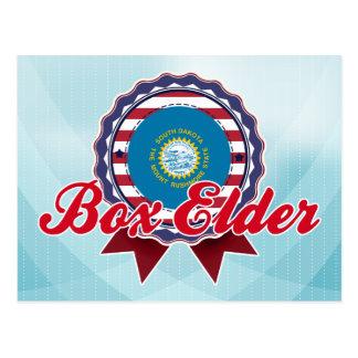 Anciano de caja, SD Tarjeta Postal