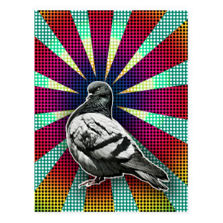 Angry Pigeon Postcard Postal