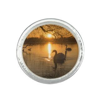 Anillo Con Foto Puesta del sol con el cisne