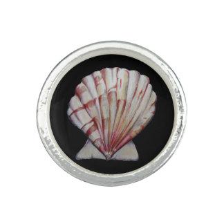 anillo de la cáscara de concha de peregrino