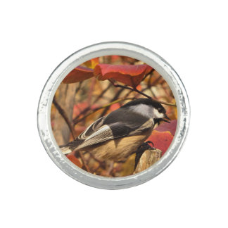 Anillos Con Foto Follaje del otoño de la naturaleza con el pájaro