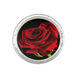 Anillos Con Foto Rosa rojo hermoso