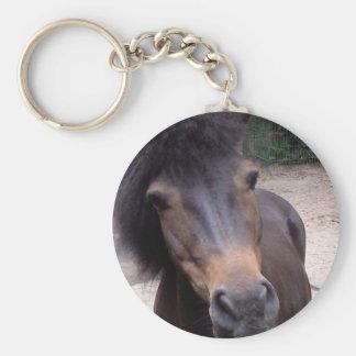 Animal, caballo, potro llavero redondo tipo chapa