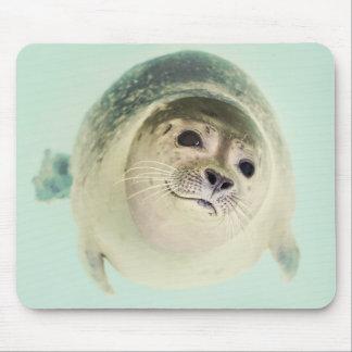 Animal de mar Mousepad