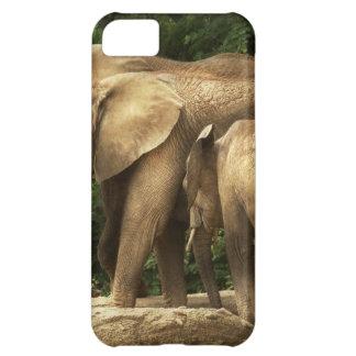 Animal - elefante - familia muy unida carcasa para iPhone 5C