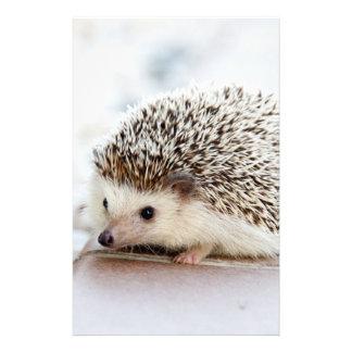 Animal lindo del erizo del bebé papelería