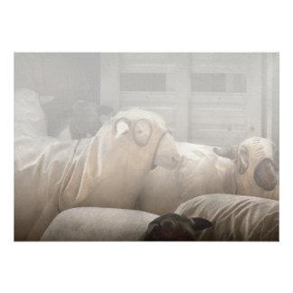 Animal - oveja - la orden anuncio personalizado