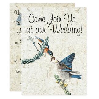 Animales de la fauna de los pájaros del Bluebird Invitación 16,5 X 22,2 Cm