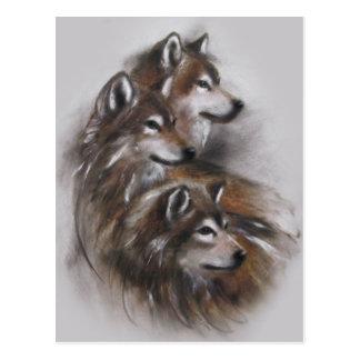 animales de los lobos del lobo, fauna, arte de la postal