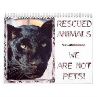 Animales rescatados - no somos mascotas calendario de pared