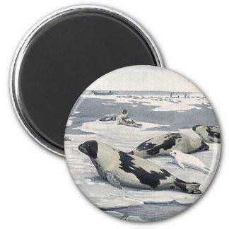 Animales salvajes del vintage, icebergs árticos de imanes