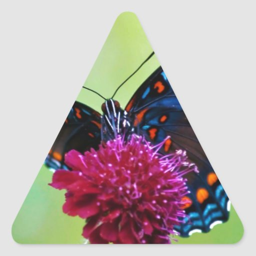 animals_other_colorful-butterfly_58333.jpg pegatinas de triangulo personalizadas