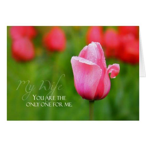 Aniversario de la esposa con el tulipán rosado felicitación