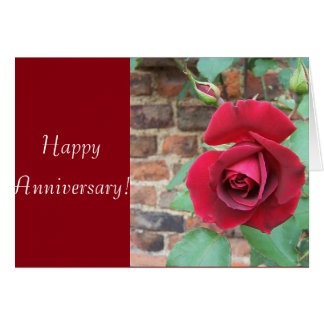 ¡Aniversario del rosa rojo! Tarjeta De Felicitación