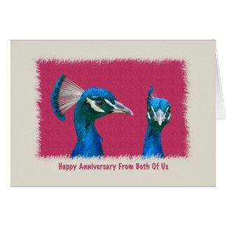 Aniversario, par de tarjeta de los pavos reales