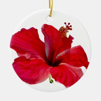 Aniversarios tropicales del Special de la flor Ornamento De Navidad