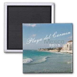 Año del cambio del imán de la playa de México del