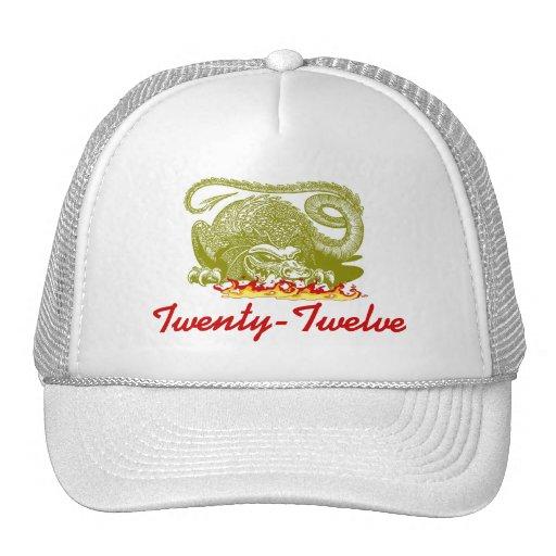 Año del casquillo 2012 del gorra de Twenty-Twelve