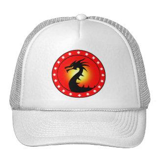 Año del dragón gorros bordados