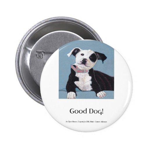AnOpenHeaven, buen perro, perro blanco y negro, ma Pins