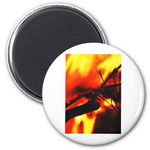 Anti oxidado del metal del extracto del humo de la iman