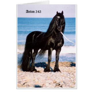 Antón en la playa tarjeta