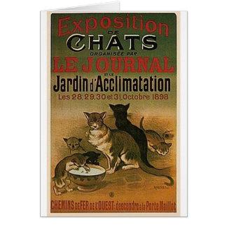Anuncio francés del vintage - gatos